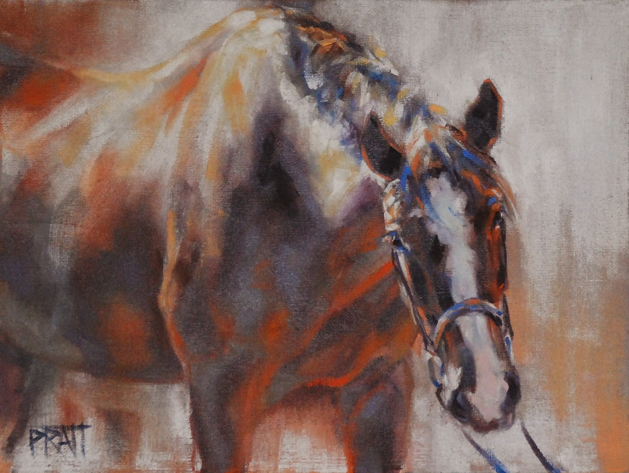 Silver Roan, 9x12, oil on canvas panel