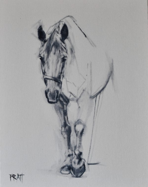 equine art, drafting, horse art, design, Jennifer Pratt
