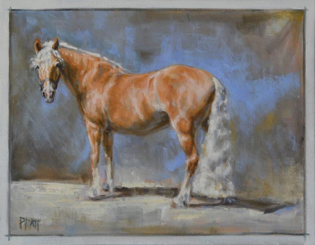 equine art-horse art-haflinger-oil painting-jennifer Pratt
