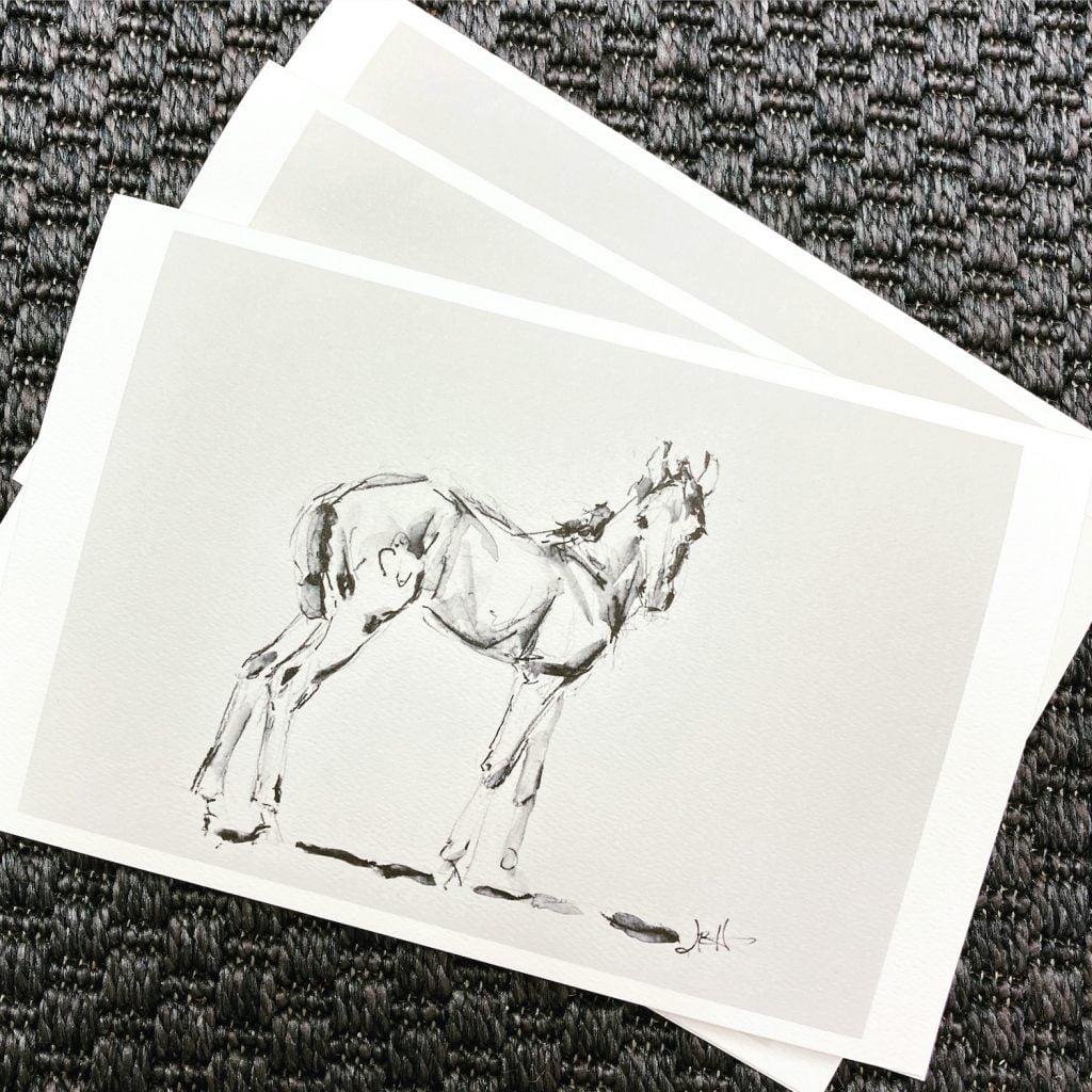 foal notecards