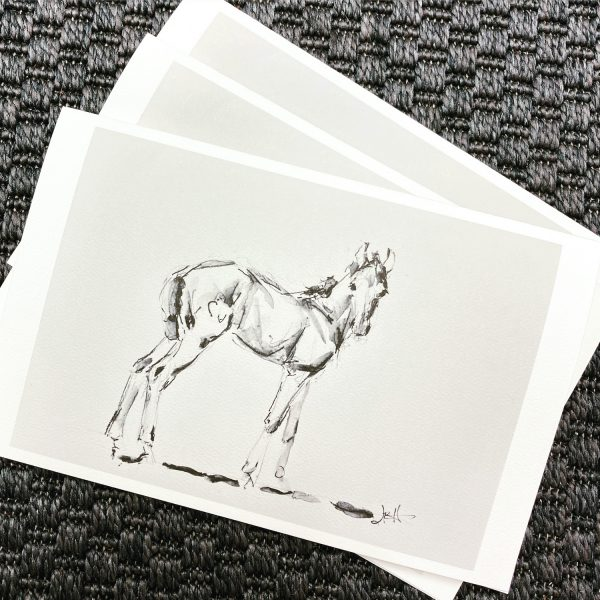 foal notecards