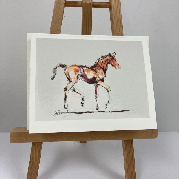 foal sketch notecards