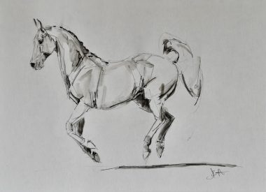 horse-sketch-equine-@jenniferpratt