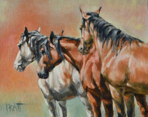 Steens Wild horses ©jenniferpratt